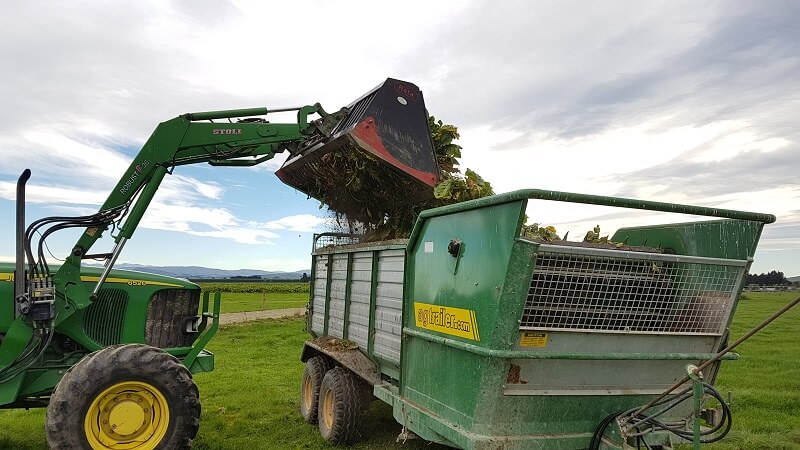 Rata Beet Bucket unloading fodder beet into feed out wagon