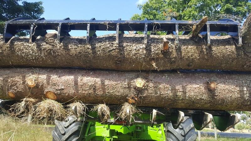 Versatile Grapple holding tree logs