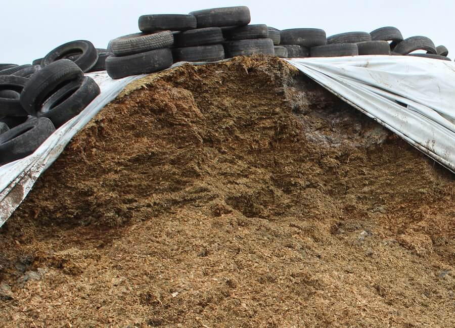 opened silage stack