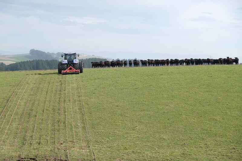 Kakahu Farm Panerazer